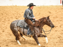 2019 NCHA Futurity Sales stellar results